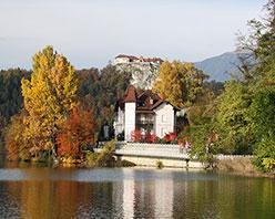 移民为什么选择斯洛文尼亚?