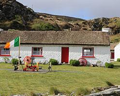 拥有爱尔兰身份可以申请瑞士移民吗?