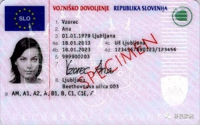 中国驾照在斯洛文尼亚能开车吗04